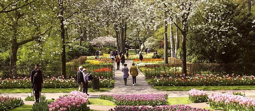 Progettare-la-natura-in-città_01.jpg