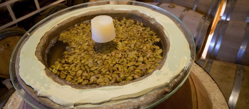 Amphora di Vecciano