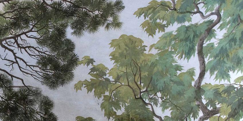 Copertina del volume Verde Maestà. L'albero tra simboli, miti e storie