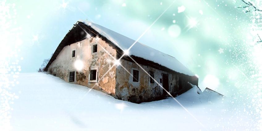 Il pane sotto la neve.jpg