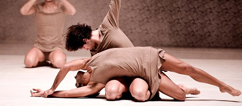 danza800-1.jpg