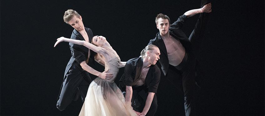 danza800-2.jpg