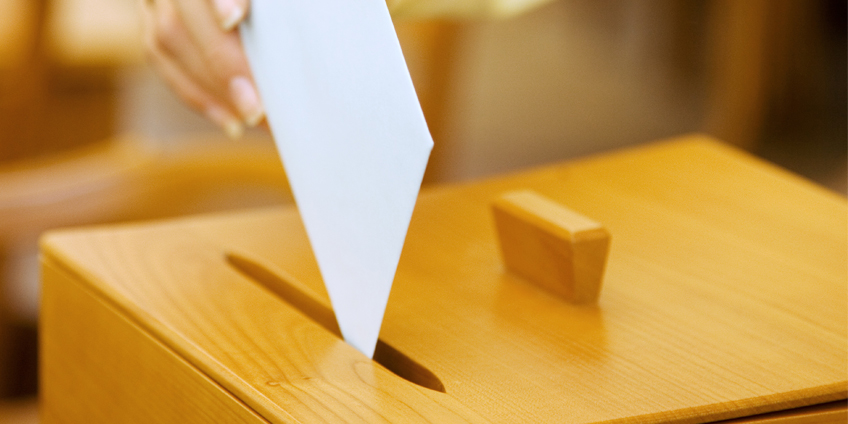votazioni800.jpg